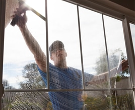Rappelling Glass Cleaning Services